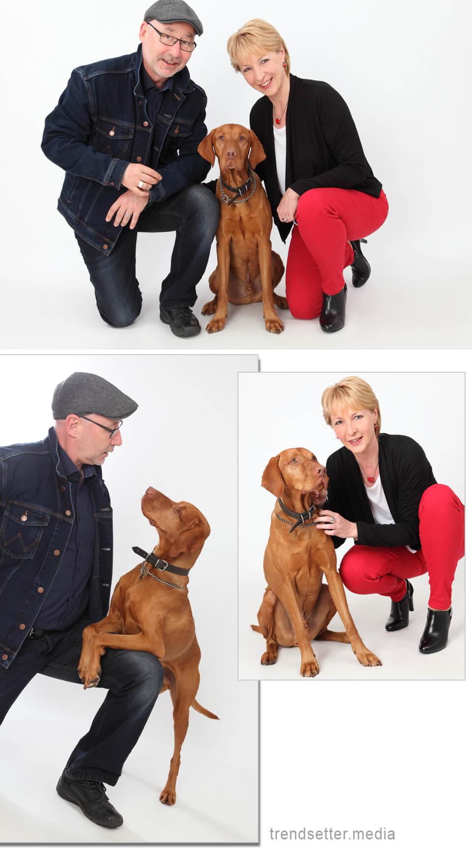 Filou, der Seniorenbesucherhund - Imagefotos vom trendsetter Fotostudio Chemnitz